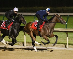 Keep Quiet (inside) working in company with Tepin on October 22nd at Churchill Downs - Coady Photography