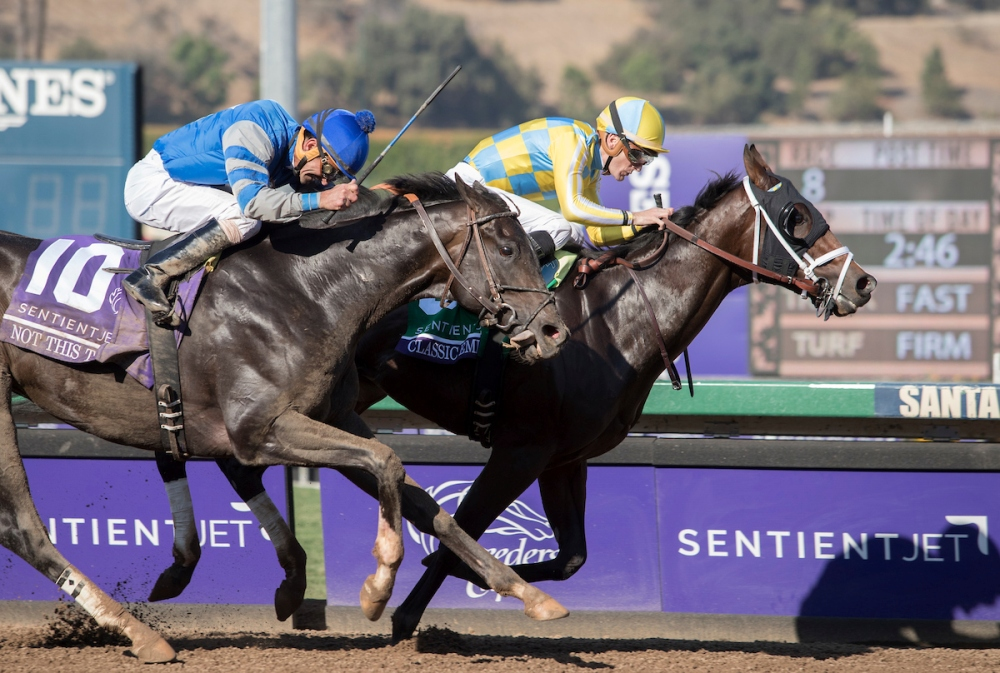 VIDEO: Classic Empire Completes Preparations for Arkansas Derby