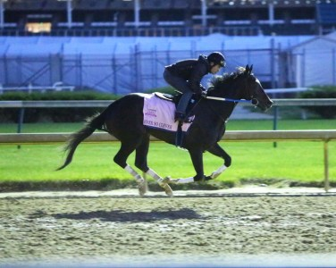 Ever So Clever working at Churchill Downs - Coady Photography