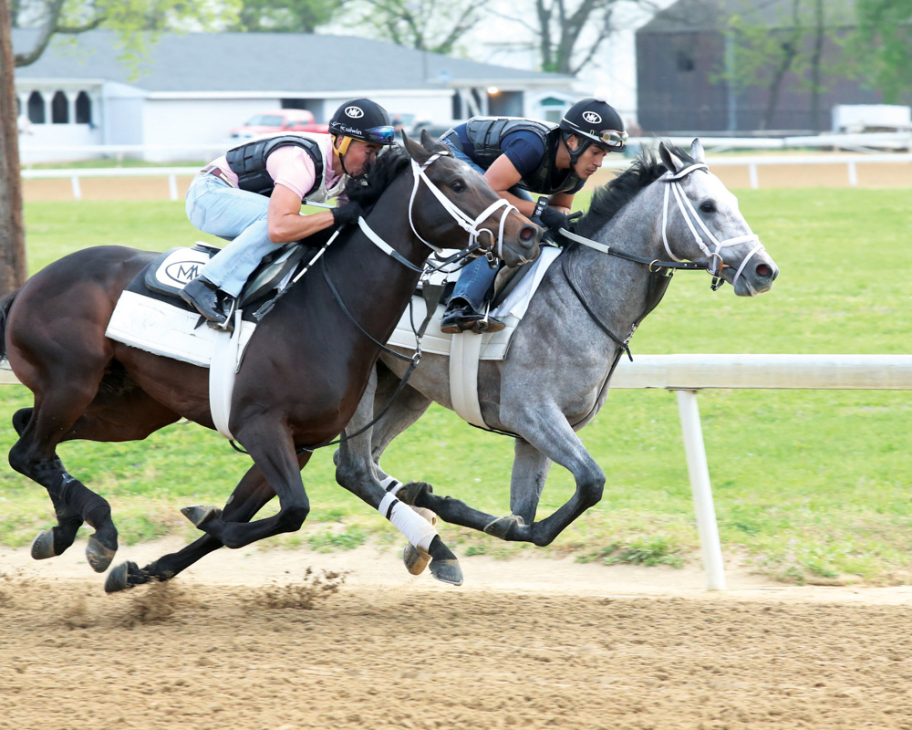 Spiral Winner Fast and Accurate Records Bullet Work at Trackside