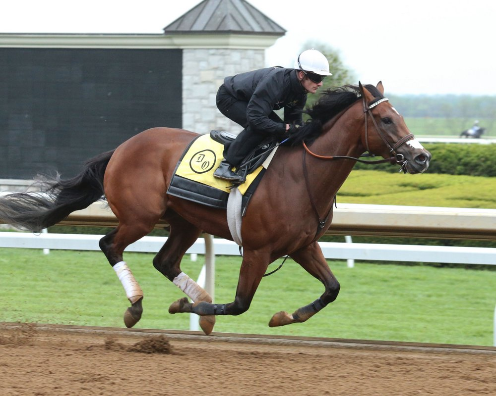 VIDEOS: Derby Contenders Irap, Practical Joke, and Tapwrit Work at Keeneland