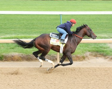 J Boys Echo working at Churchill Downs - Coady Photography