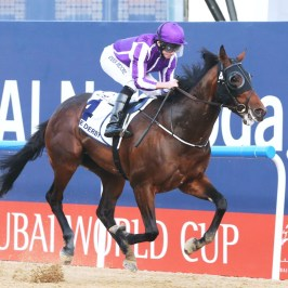 Mo Tom Impresses In First Pre Derby Workout The Turf Board