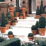 Standards and Topiary