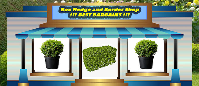 Best Bargains 2
