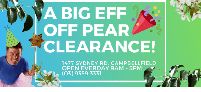 Big Eff Off Pear Clearance