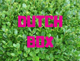 Dutch Box