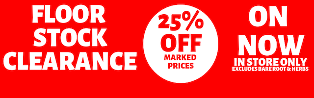 25% off Banner