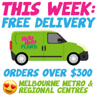 Free Plant Delivery Metro Melbourne and VIC