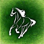 horse-966521_960_720[1]