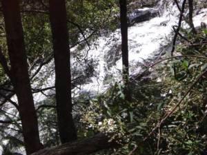Mystery Falls First Cascade.