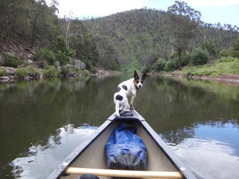 Canoeing the Macalister River