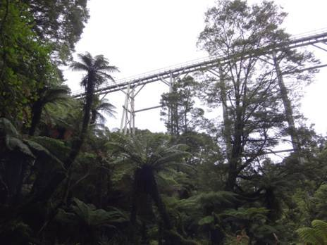Percy Burn Viaduct South Coast Track Fiordland NZ