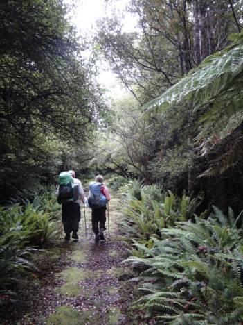 South Coast Track Fiordland NZ: Wairaurahiri to Rarakau