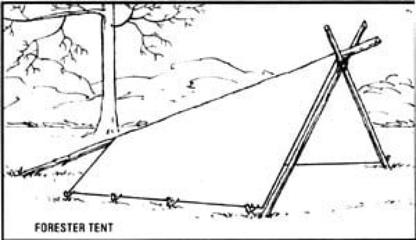 Whelen Forester Tent