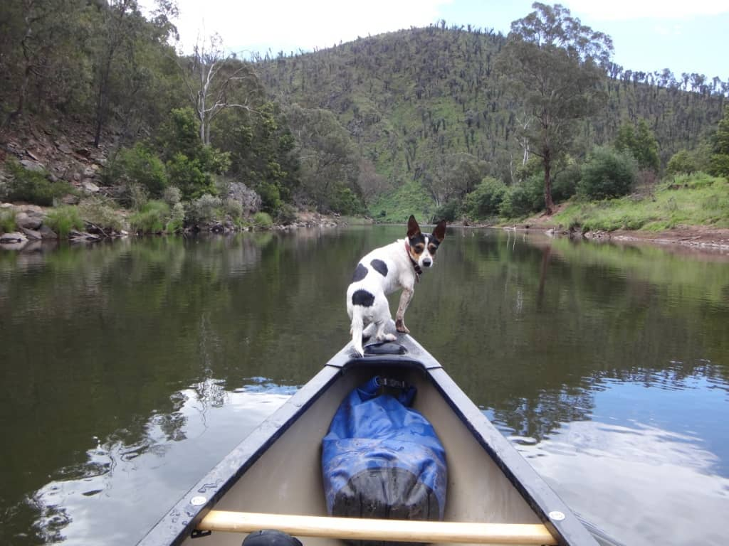 Canoeing Gippsland's Rivers