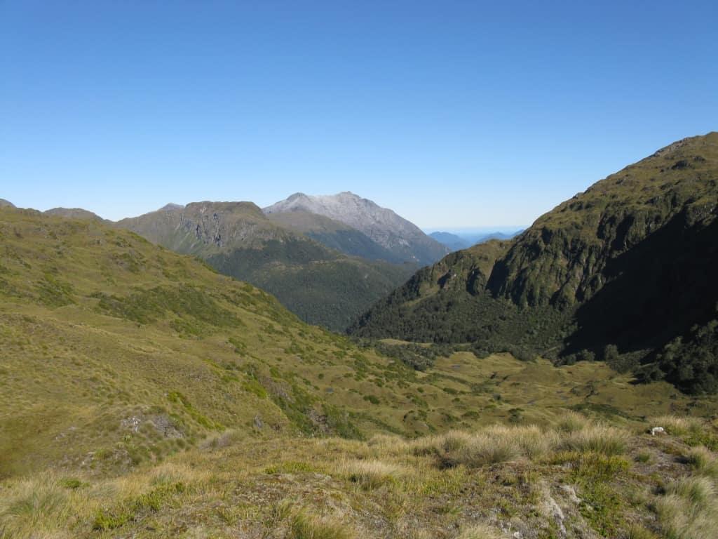 Hunting in Fiordland: