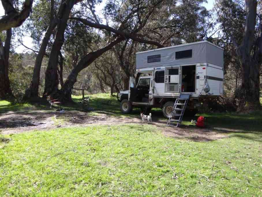 Horseyard Flat, Moroka River: Spot enjoys camping - as you can see!