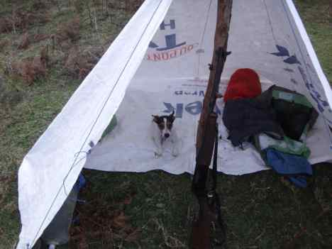 Spot is a big help setting up camp!