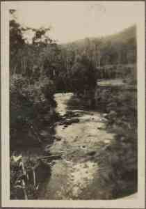 4. Yarra River between McVeighs & Upper Yarra Hut(s)