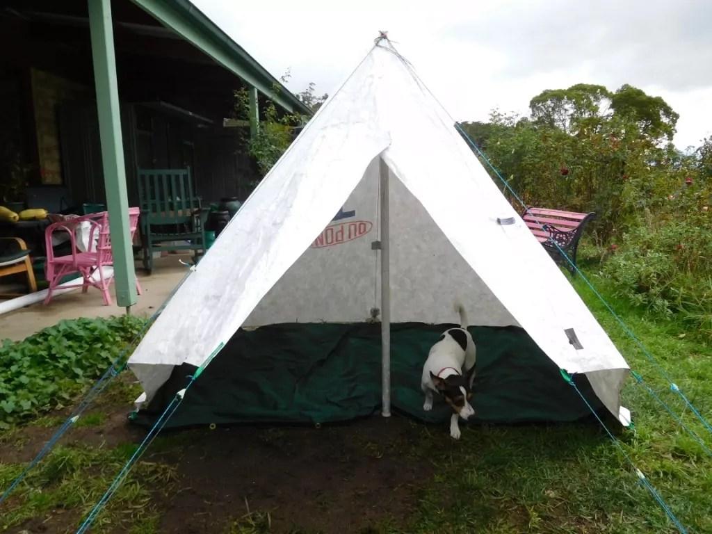 The Deer Hunteru0027s Tent & Col Townsend Whelenu0027s Forester Tent u2013 The Ultralight Hiker