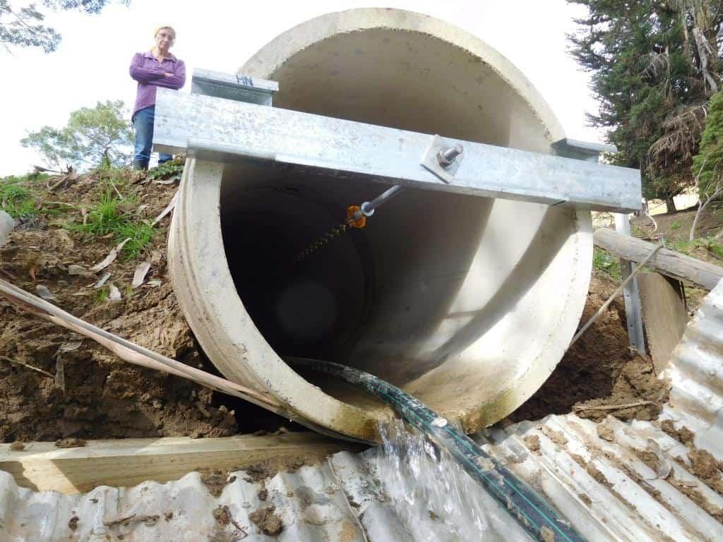 A Dam Nuisance: