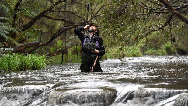 Yarra River Photo Survey: