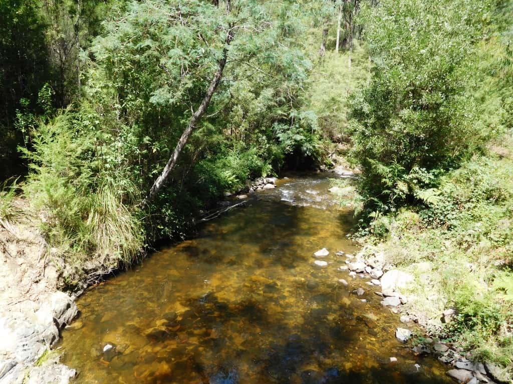 Tanjil River East Branch