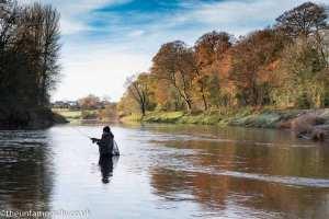 Angler on the Annan