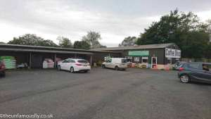 Shop and Car Park of Green Frog