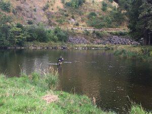 Angler catches a fish ont he Tweed