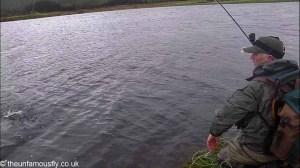 Last fish at Finlaggan
