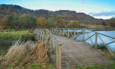Willowgate Trout Fishery