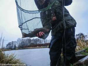 Last fish netted at Swanswater
