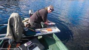 Returning a Menteith Trout