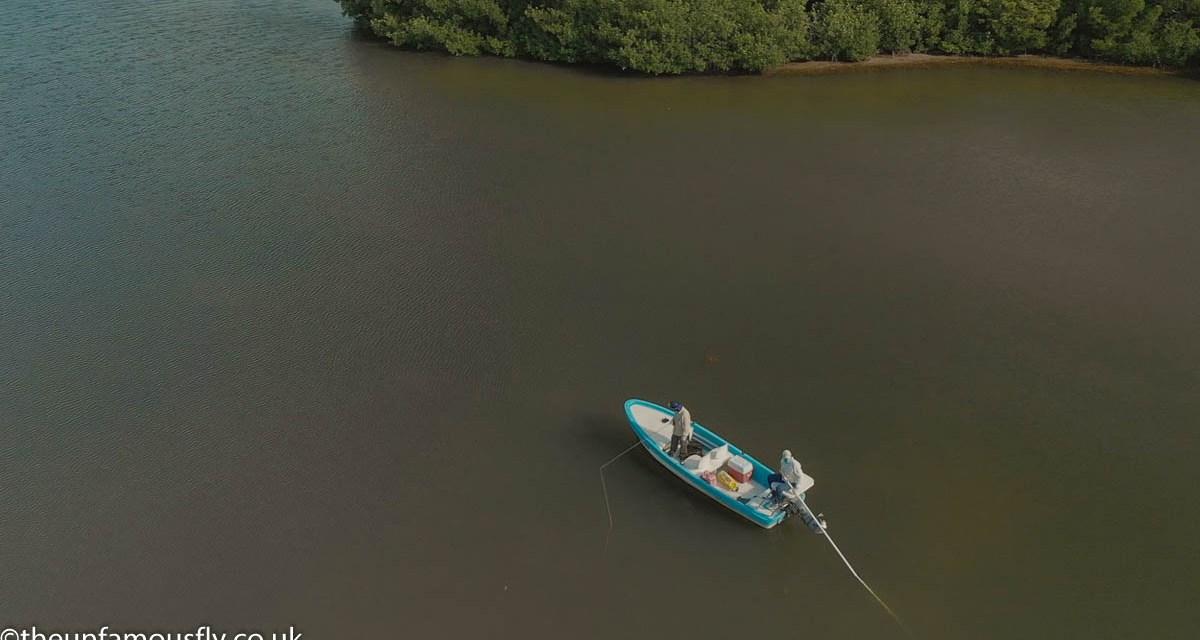 This is Tarpon Fishing