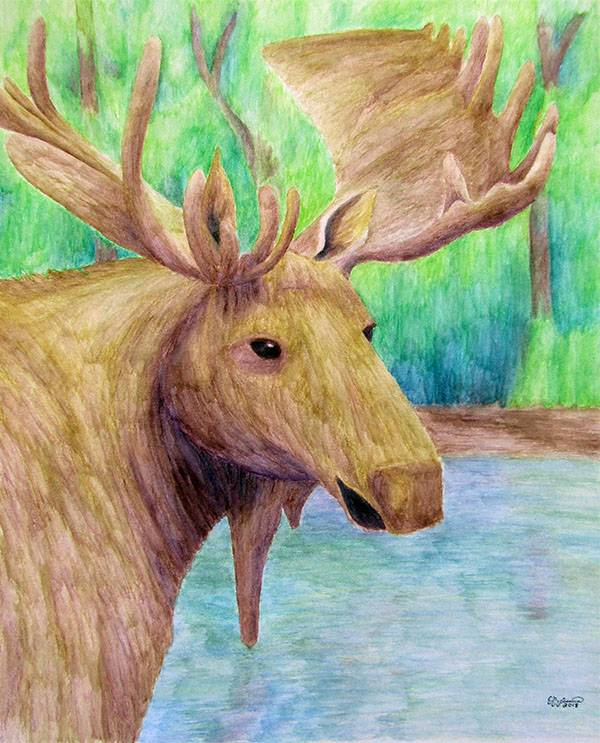Moose by The Unfolding Butterfly