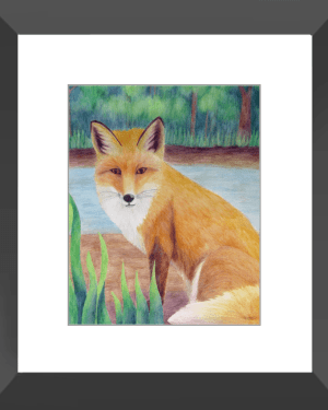 Fox Framed Print of Watercolor Pencil Land Mammal Fine Art
