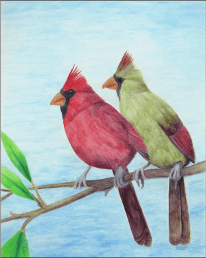 Cardinal Couple Giclee Print of Watercolor Pencil Avian Totem Animal Fine Art