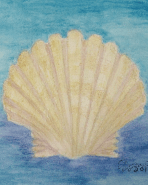 Scallop Shell Metal Magnet of Watercolor Pencil Drawing Beach Fine Art