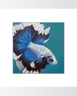 Betta Fish – Framed Print of Siamese Fighting Fish Acrylic Paint Fine Art