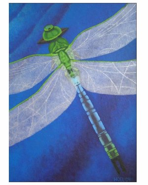 Card - Resilience - Dragonfly 5x7 Inch Folded Greeting Cards Of Acrylic Painting Fine Art