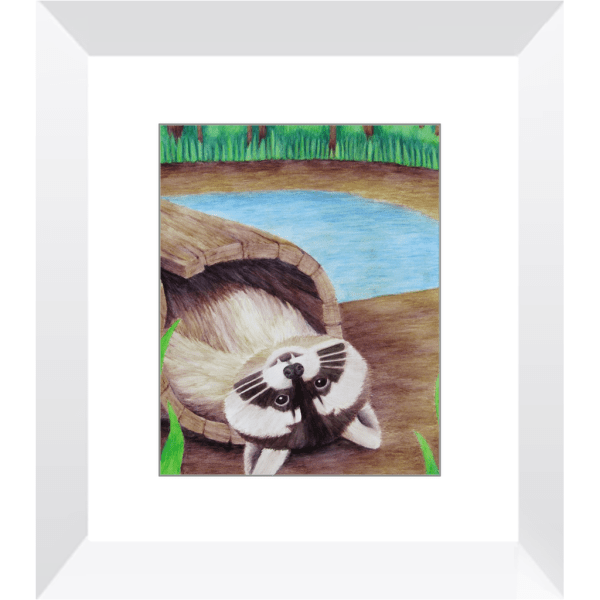 Raccoon – Framed Print of Watercolor Pencil Mammal Fine Art