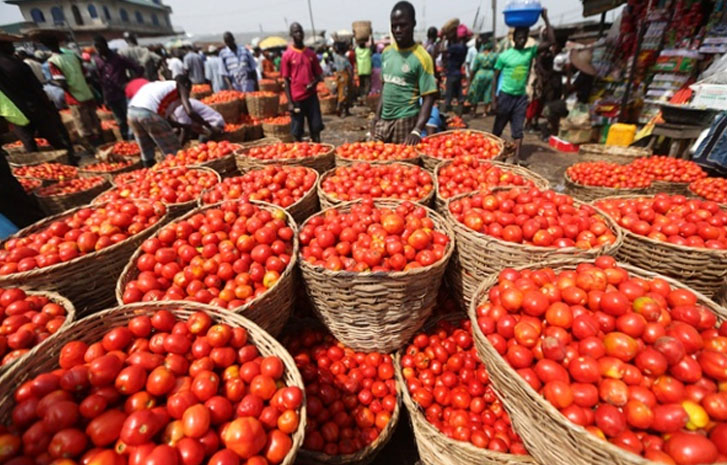 Prices Of Major Foodstuffs In South-West Markets Increase By 100%