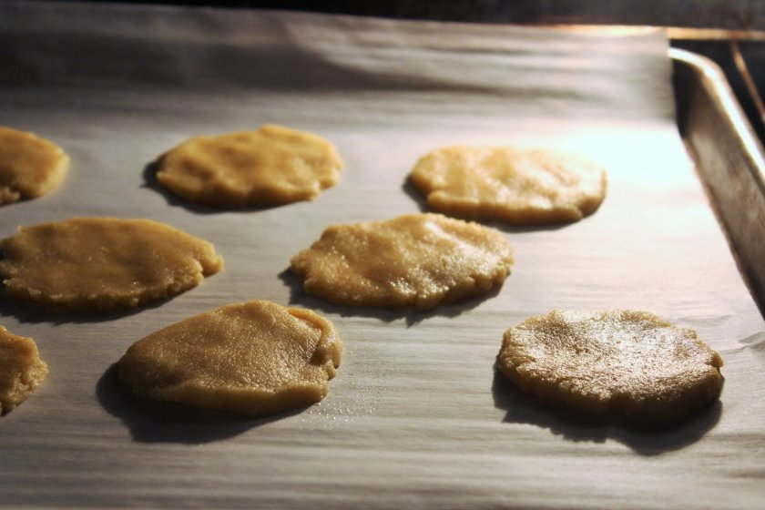 Crispy Chewy Honey Cookies Aip Paleo The Unskilled