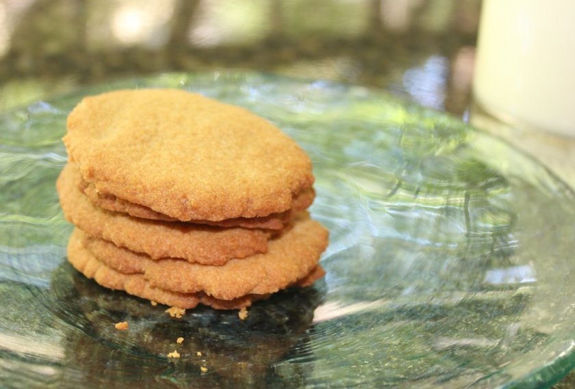 aip paleo honey cookies