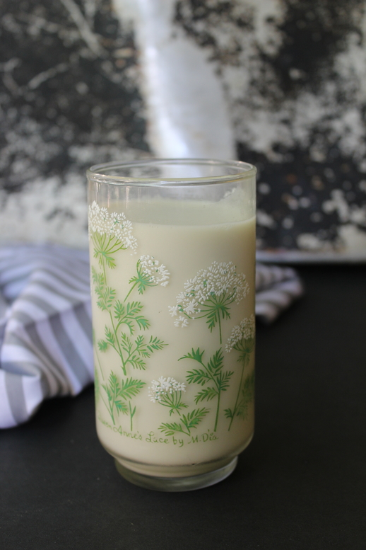 tigernut tiger nut milk aip paleo 2