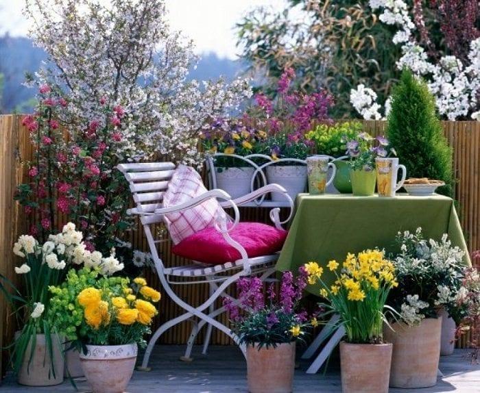 Beautiful flowers Balcony Garden Ideas