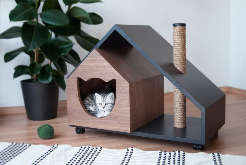 Amazing Pet Beds for Cats