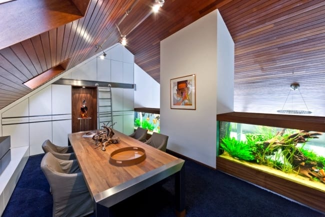 Creative Home Aquarium Ideas
